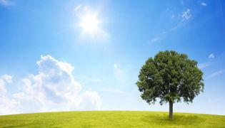 Mit Energie nachhaltig zu wirtschaften heißt, Energie mit Blick in die Zukunft und mit Kenntnis der Lebensphasen von Immobilien einzusetzen